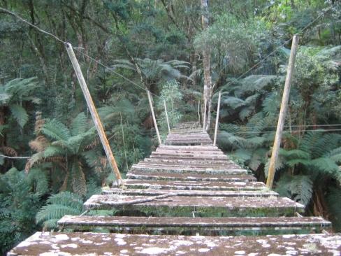 Old rickety bridge